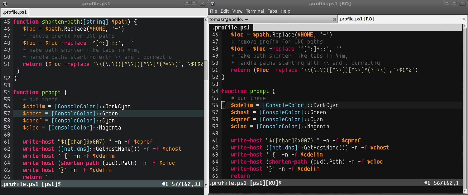 Molokai on 256-Color Terminals